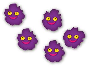 ウイルス-ウィルス-細菌